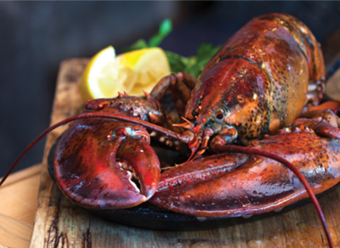 Experience a Traditional Lobster Dinner