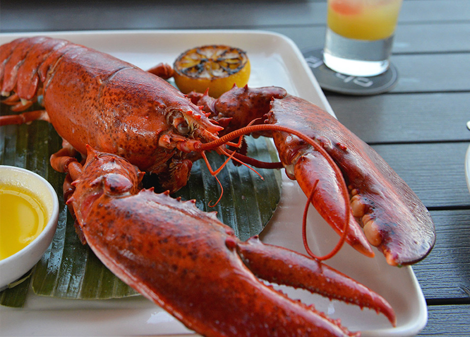 Lobster with lemon and clarified butter, yum!